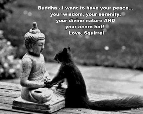 Buddha and squirrel